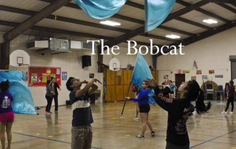 Colorguard Tosses To Success